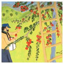 Apple Picker, 1993 - Marion Forgey Line ©LCVA